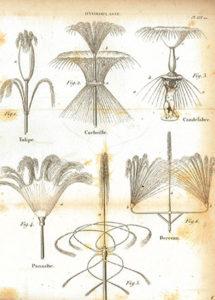 Exemplos dos múltiplos efeitos que se podiam obter com os repuxos de água nos jardins.«Figures pour l'almanach du bon jardinier». 12.ème éd. Paris: Audot, 1840, planche LVI, p. 157 (BNP S.A. 6624 P.)