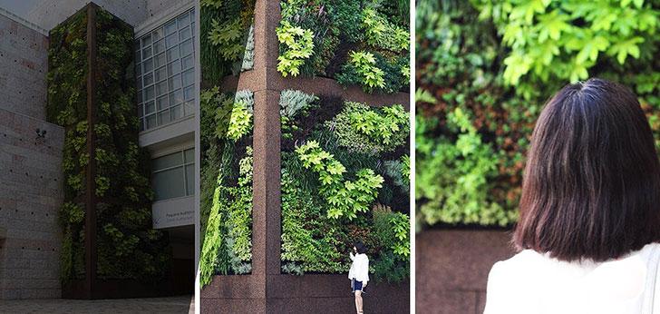 #CCBCidadeDigital | Lisboa Capital Verde Europeia 2020 – Jardim Vertical